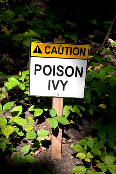Caution: Poison Ivy sign